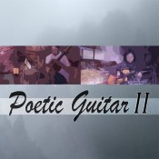 Poetic Acoustic Guitars