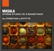 Masala - String Studio Sounds